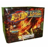 bustin_loose-401x384-500x500