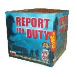 report_for_duty-150x145-500x500