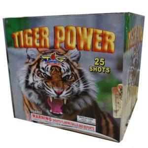 tiger power 500 gram cake topgun firework