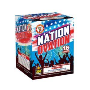 nation ovation 200 gram cake winda firework